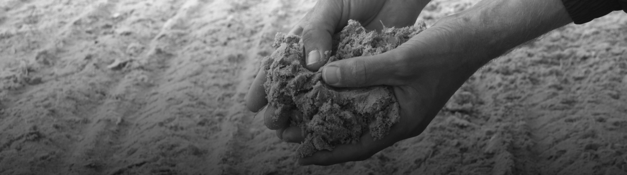 WaCoNA-1
